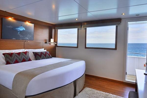 Каюта с окном Oceanview Elite